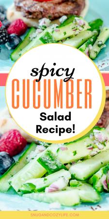 Spicy Cucumber Salad Recipe
