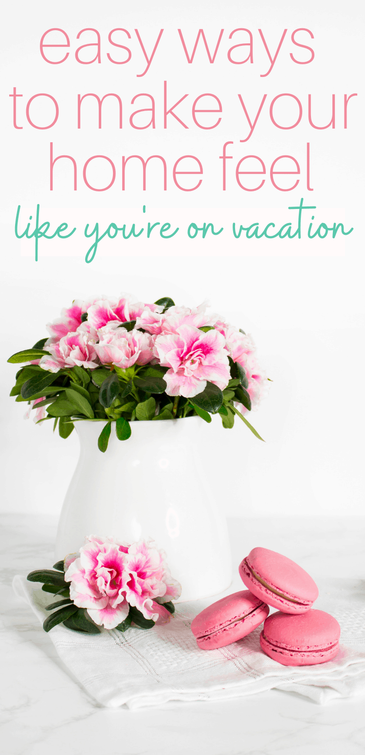 bouquet of flowers in a vase and macaroons